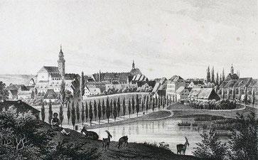 Bischofswerda im 19. Jahrhundert.