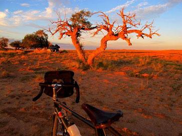 Rad - Jeep MONGOLEI 2014: Ullan Batoor - Wüste Gobi - Karakorim