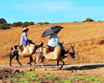 Womotravel SÜDWEST-EUROPA Herbst 2012: Marokko - Spanien - Portugal