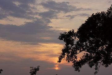 今日の夕焼けは空のグラデーションがきれいでした。