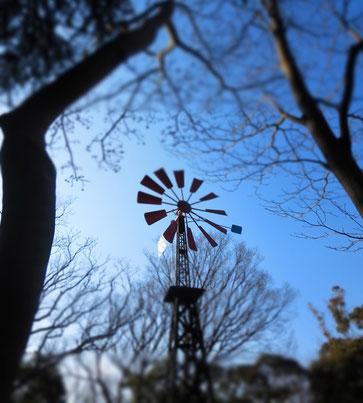 港の見える丘公園にある風車