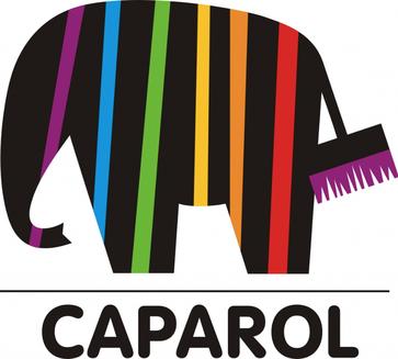 Caparol – Ihr starker Partner Innovative Produkte, zuverlässige Unterstützung