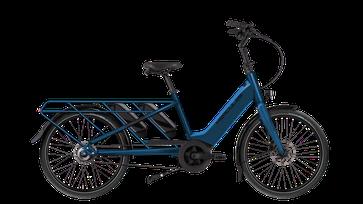 Hercules Rob Family F360 Lasten e-Bike / Lastenfahrrad mit Elektromotor 2022