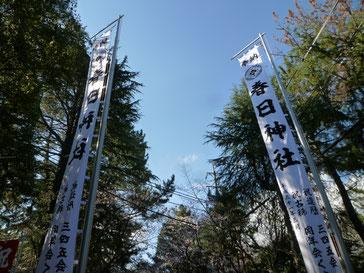 愛知県高浜市の神社のぼり。9m50cmの対ののぼり。