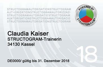 Structogram Trainer-Lizenz-Karte