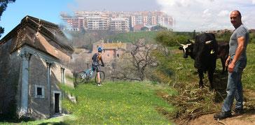 OmoGirando la Valle della Caffarella