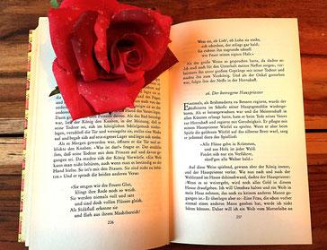 Vorlesen, Vorleserin, Buch, Bücher, Achtsamkeit, achtsam