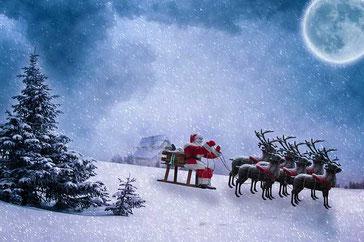 Weihnachtsgedichte: Rentier Rudolph