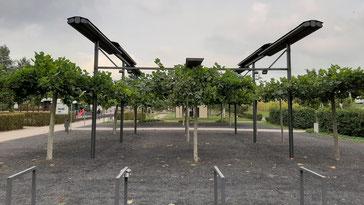 Markisendach für Generationenpark Darfeld