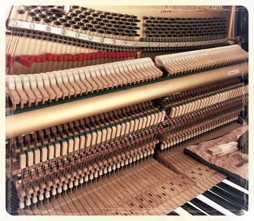 福岡 ピアノ 調律 ピアノ調律 修理 ピアノ修理