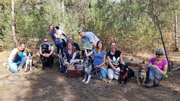 Escaperoom voor honden hondentraining plezier met je hond