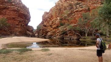 Jérôme contemple notre prochain lieu de baignade, de l'eau dans le canyon, comme un petit lac