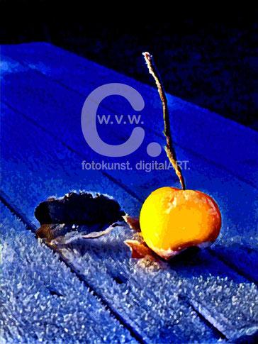 """""""Der Apfel I""""; © Carolin Wolfram von Wolmar"""