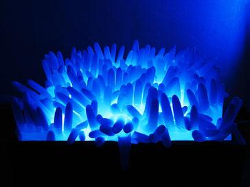Deep blue, 2010, Leuchtkasten in Holzrahmen, liegend, Einmalhandschuhe blau,  55 x 30 x 50 cm