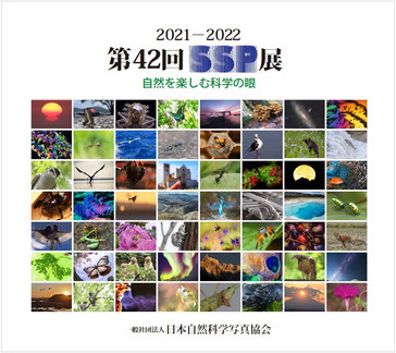 2021-2022 第42回SSP展図録