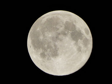 昨夜のSuper moon!