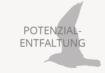 Coaching zur Potentialentfaltung