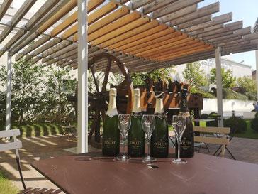 Champagnestreek Ay wijnhuis Le Collet