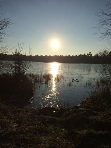 Bullensee, Foto aufgenommen im Januar 2015