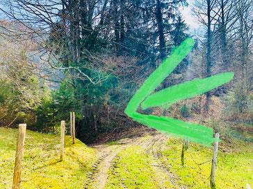 Weg zum Hohlen Stein bei Sulzberg