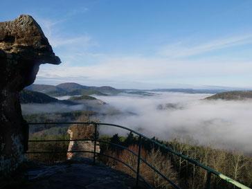 Blick vom Drachenfels aufs Dahner Felsenland