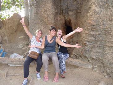 Baobab sacré Joal