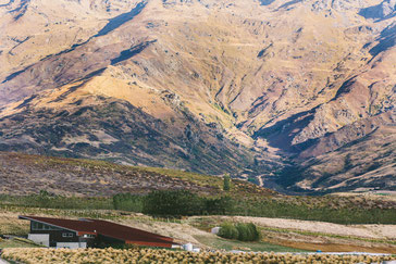 Amisfield Winzerei in Central Otago, Neuseeland