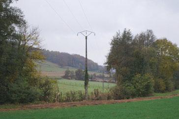 L'élagage de la végétation proche de la ligne électrique n'a pas permis d'éradiquer les microcoupures.
