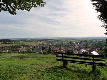 Aussicht von Berg Steinsberg auf Sinsheim-Weiler und den Kraichgau.
