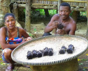 Kleinbauern in Madagaskar