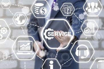 Mobile SAP Customer Service (CS)