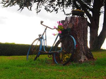 Frankreich: in der Dordogne - das Rad als Outdoor-Kunstobjekt