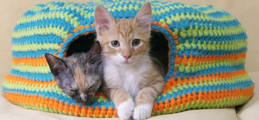 Cama para gatos tejida a crochet / Crochet cat bed (or nest!)