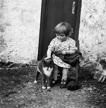 """""""Celui qui possède un chat, ne crains pas la solitude. Aimer - ce n'est pas de grandes déclarations, ce sont des petites choses simples et sans raison..."""""""""""