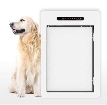 Porte Automatique Chatières Automatique Trappe Pour Chien Et Chat - Porte pour chien