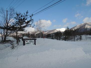 看板は雪に埋もれております・・・
