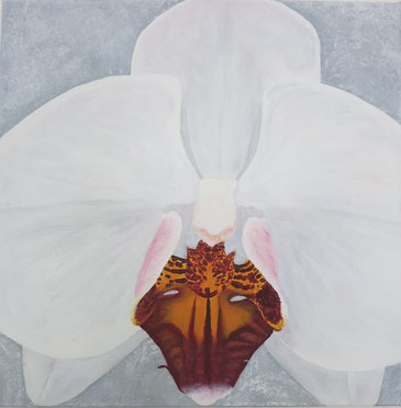 Weisse Pracht auf grauem Grund, 40 x 40 cm, Acryl, CHF 410.--