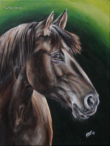 "Pferdegemälde Huzule ""Pandora"", Acryl auf Leinwand, 40x30, 2015, Hanna Stemke von Hufspuren, www,hufspuren.com"
