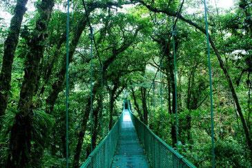 Paquete guanacaste - monteverde - arenal
