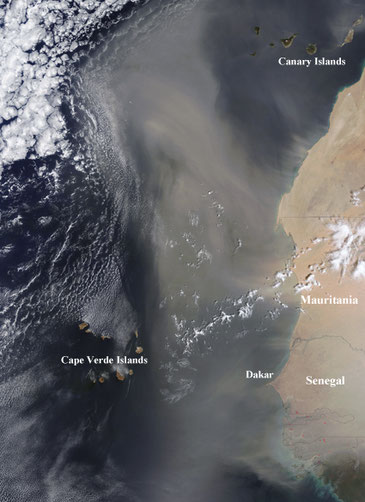 Thick dust hovers over the Atlantic Ocean west of Western Sahara, Mauritania, and Senegal in this image. Dust storms such as this one regularly blow out of Africa's Sahara Desert, occasionally pushing dust as far as Florida and the Caribbean.  ©NASA GSFC.