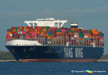 Containerschiff YM WISDOM