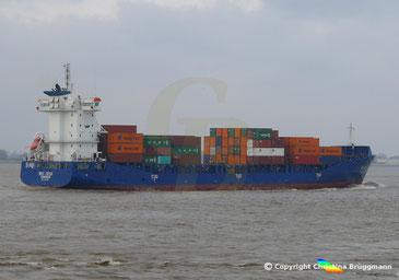 Containerschiff WES GESA