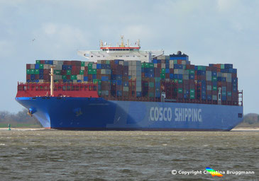Containerschiff COSCO SHIPPING DENALI