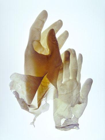 Pas de deux, 2009 (Fotografie auf Aludibond, 90 x 120cm)