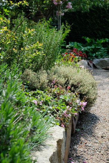 dieartigeGARTEN // Mai Frühlingsgarten - Japanischer Bauerngarten - Lavendel, Nessel, Thymian, Blaubeere, Rosmarin