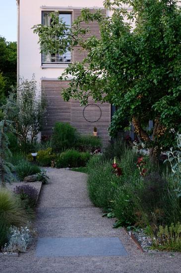 dieartigeGARTEN // next to the path to the house - Lavendel, Iris, Gras, Apfelbaum, Sommerflieder