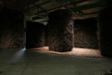 Gianni Pettena, Galleria Enrico Fornello, Prato, 29.4-29.5.2009