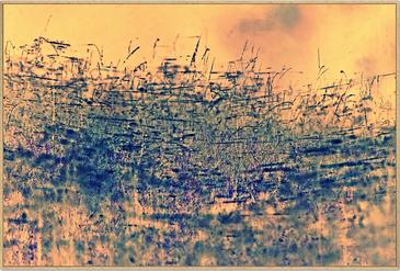 """""""Verwoben"""" (Fine Art Print, limitierte Auflage; 90 x 60 cm)"""
