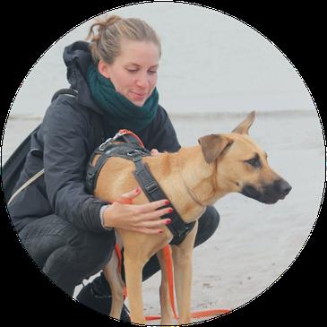 Hundetraining, Hundeschule, Hundetrainerin & Gassiservice Hamburg/ Lokstedt