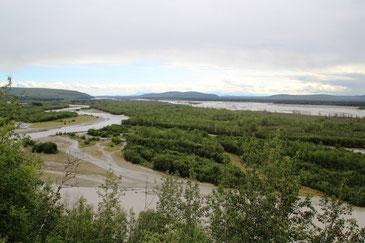 la plaine de Tanana River